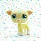 Littlest Pet Shop #875 Yellow Greyhound Whippet Dog ~ LPS