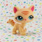 Littlest Pet Shop #1572 Yellow and Pink Cat ~ LPS Collector's Pack
