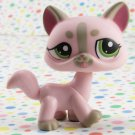 Littlest Pet Shop #1326  Caring Corners Cat ~LPS Nurse Cat
