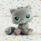 Littlest Pet Shop #81 Gray Cat ~ LPS Pet Pairs