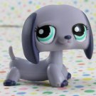 Littlest Pet Shop #1367 Daschund Dog ~ LPS Collector's Pack