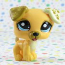 Littlest Pet Shop #1496 Jack Russell Dog ~ LPS Target Welcome Pets