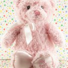 Baby Gund Pink My First Teddy Bear Baby Toy Plush Lovey