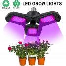 144 LED Grow Lights Full Spectrum Panel