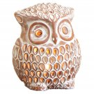 Enchanting Owl Luminary Candle Holder Indoor Outdoor Accent Lighting