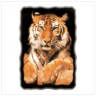Golden Tiger wall clock  12177