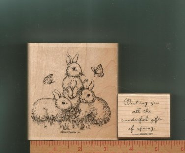 Set of Two Spring Rubber Stamps/Wood Mounts, Stampin Up