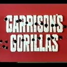 Garrison's Gorillas Complete Series Definitive Edition DVDs -Region 0!
