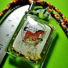 2244-THAI REAL AMULET DRAWING PENDANT HORSE SEX LADY CHARMING ATTRACT SEX LP ROJ