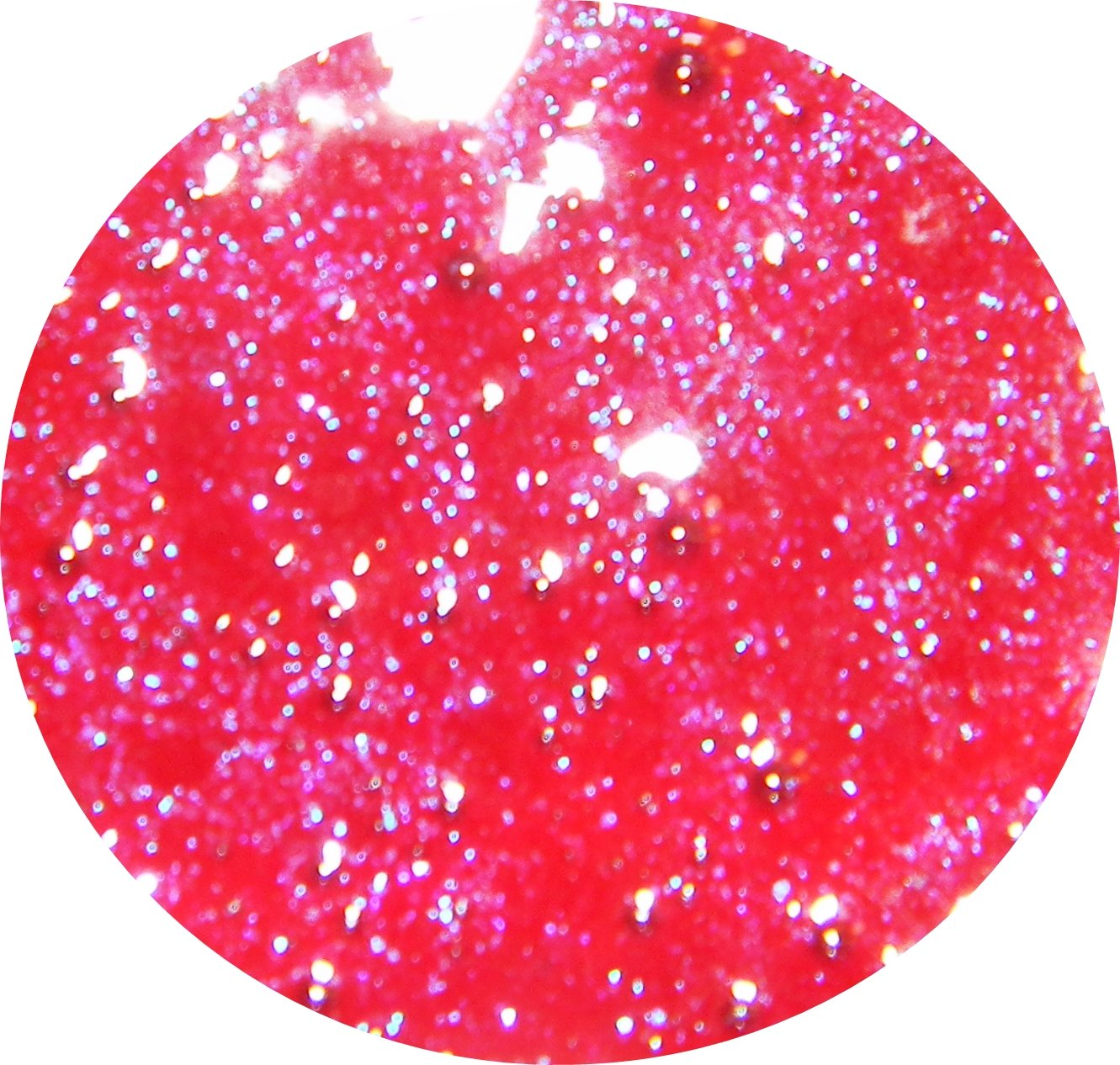 Bewitched - Holo-Gloss � Darling Girl Cosmetics