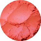 Fantasia DuoChrome blush (petit) ♥ Darling Girl Cosmetics Blush