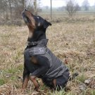 "Dog All-Year / Rain Jacket, (M) 15.5"", Black Weather Resistant"