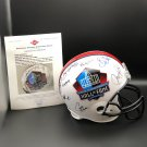 Pro Football HOF Helmet Autographed by 17 Hall of Fame Inductees