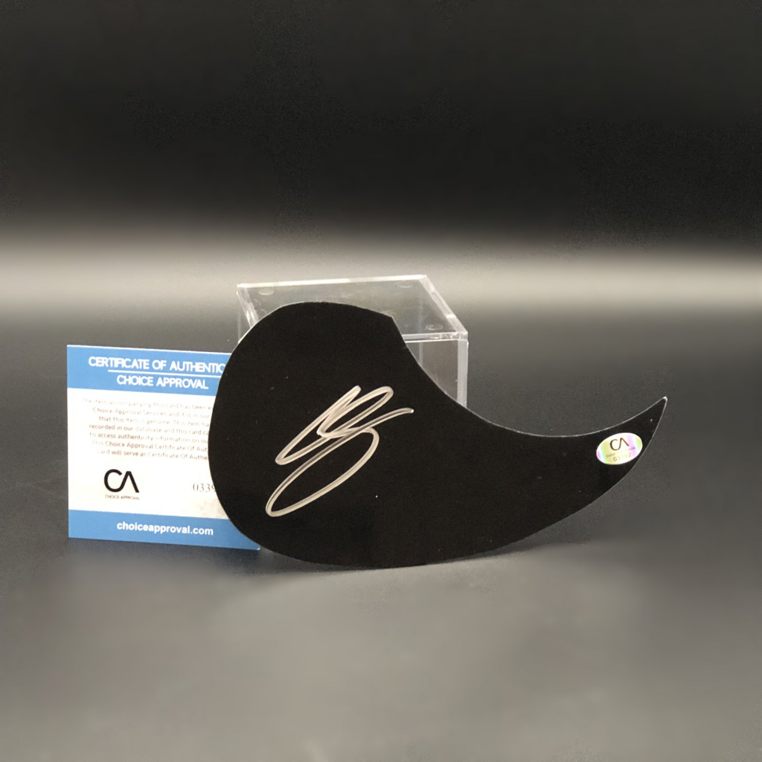 Chris Stapleton Country Music Superstar Autographed Acoustic Guitar Pick Guard
