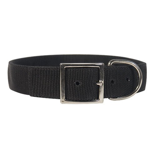 Heavy Duty Dog Collar with Name Tag