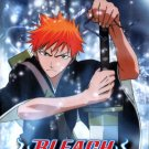 BLEACH PART 7 [3 DVD]