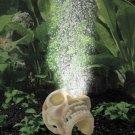 Ario Bone Collection Human Skull W/ario 2 Moonlight