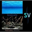 "12"" Seascape/natural Mystic Background 50ft"