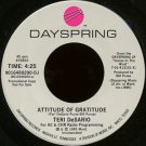 "TERI DESARIO--""""ATTITUDE OF GRATITUDE"""" (4:25)/""""VOICES IN THE WIND"""" (4:25) 45 RPM 7"""" Vinyl"