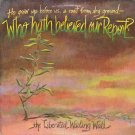 THE LIBERATED WAILING WALL--WHO HATH BELIEVED OUR REPORT? Vinyl LP