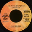 "DAVID MEECE--""AND YOU KNOW IT'S RIGHT"" (4:17) (Stereo/Mono) 45 RPM 7"" Vinyl"