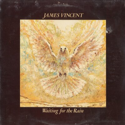 JAMES VINCENT--WAITING FOR THE RAIN 1978 Vinyl LP (Original Issue) (Sealed)