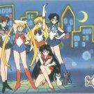 Sailor Moon Archival Trading Card #27