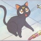 Sailor Moon Archival Trading Card #48