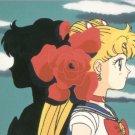 Sailor Moon Powerful Trading Card #8