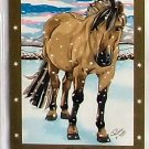 Bella Sara Series Two Card #8 Charlie