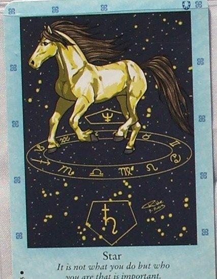 Bella Sara Northern Lights Card #23 Star