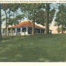 Fannie Lupton Building in Harrisonburg, Virginia Vintage Postcard