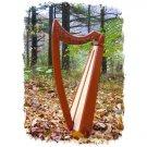 Shepherd Celtic Lap Harp