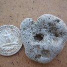 Natural Holey Holed Holy Hole Stone Pebble Sea Rock J