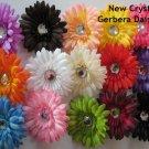 Dozen Lot of 12 Gerber Daisy Flower Heads Girls Gerbera