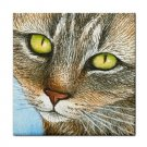 Ceramic Tile Coaster from art painting Cat 304