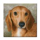 Ceramic Tile Coaster from art painting Dog 88 Dachshund