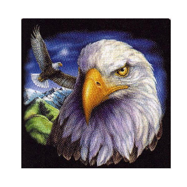 Large American Bald Eagle Head Flying Queen Mink Style Blanket
