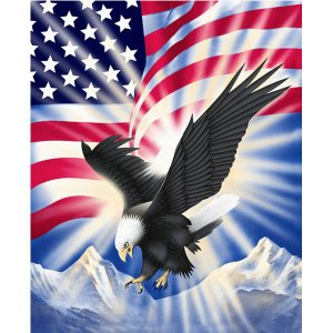 Red White Blue American Flag Eagle Bird Queen Mink Style Blanket