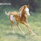 Little Foal Cross Stitch Pattern Horses ETP