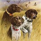 German Shorthair Pointers Cross Stitch Pattern Dogs ETP