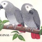 2 Congo African Greys 2 Cross Stitch Pattern Parrots ETP