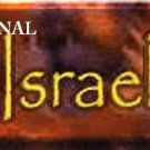 ISRAEL ~ Cross Stitch Pattern Jewish ETP