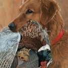 Golden Retriever w Bird Cross Stitch Pattern Dogs ETP