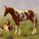 Spotted Ponies Cross Stitch Pattern Horses Equine ETP