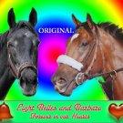 Eight Belles & Barbaro Cross Stitch Pattern Race Horse ETP