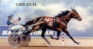 Malabar Man STANDARD~BRED Cross Stitch Pattern Horse ETP