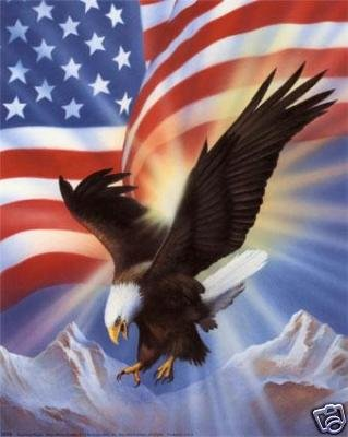 America's Pride Cross Stitch Pattern Eagle Flag ETP