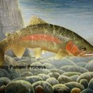Rainbow Trout 1 Cross Stitch Pattern Fish Waterlife ETP