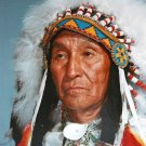 Cree Indian Chief Cross Stitch Pattern Native American ETP